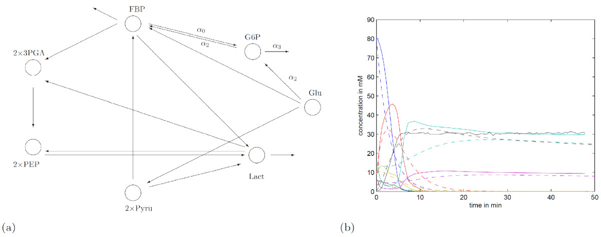 https://static-content.springer.com/image/art%3A10.1186%2F1752-0509-3-25/MediaObjects/12918_2008_Article_293_Fig8_HTML.jpg