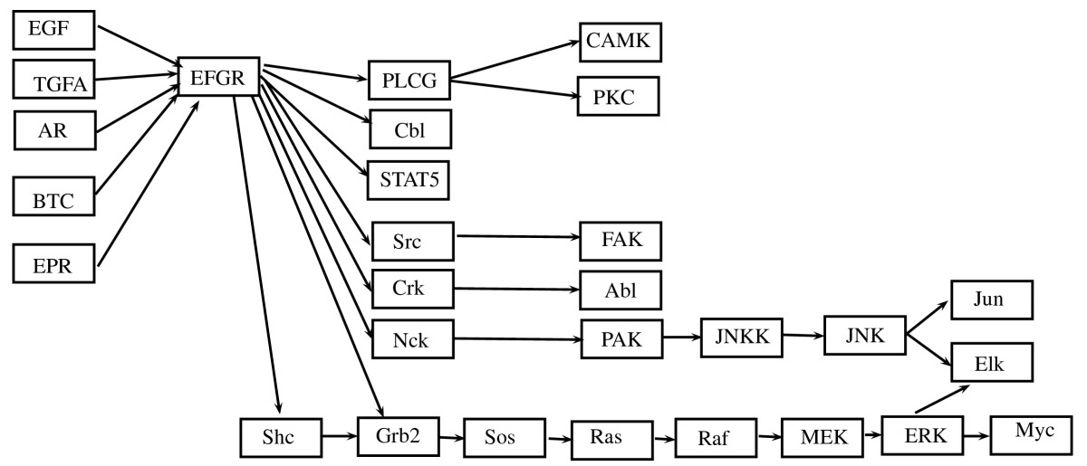 https://static-content.springer.com/image/art%3A10.1186%2F1752-0509-4-121/MediaObjects/12918_2010_Article_510_Fig7_HTML.jpg
