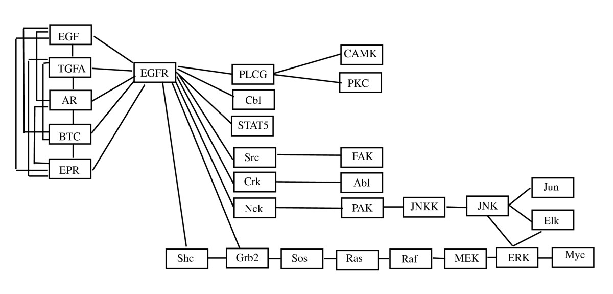 https://static-content.springer.com/image/art%3A10.1186%2F1752-0509-4-121/MediaObjects/12918_2010_Article_510_Fig8_HTML.jpg