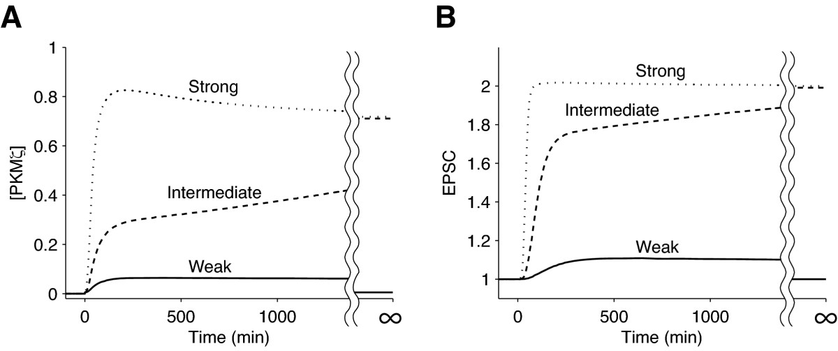 https://static-content.springer.com/image/art%3A10.1186%2F1752-0509-4-181/MediaObjects/12918_2010_Article_1439_Fig2_HTML.jpg