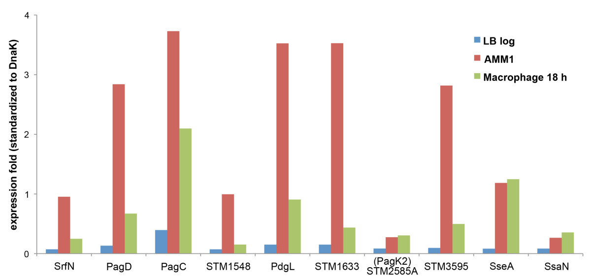 https://static-content.springer.com/image/art%3A10.1186%2F1752-0509-5-100/MediaObjects/12918_2011_Article_711_Fig2_HTML.jpg