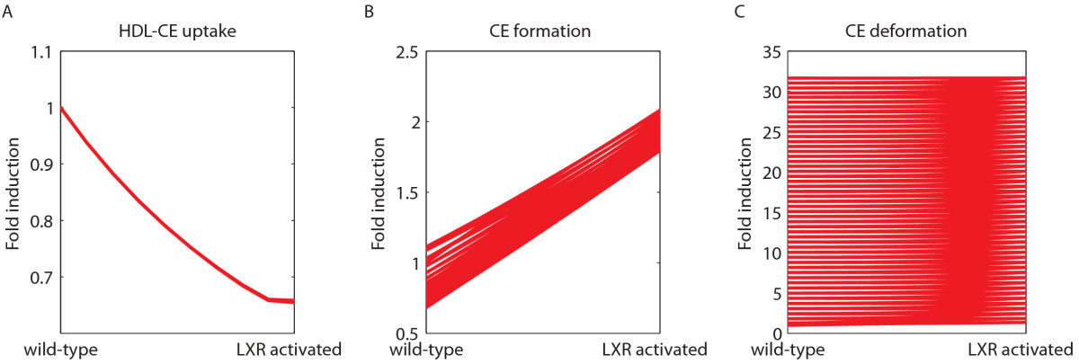 https://static-content.springer.com/image/art%3A10.1186%2F1752-0509-5-174/MediaObjects/12918_2011_Article_807_Fig6_HTML.jpg