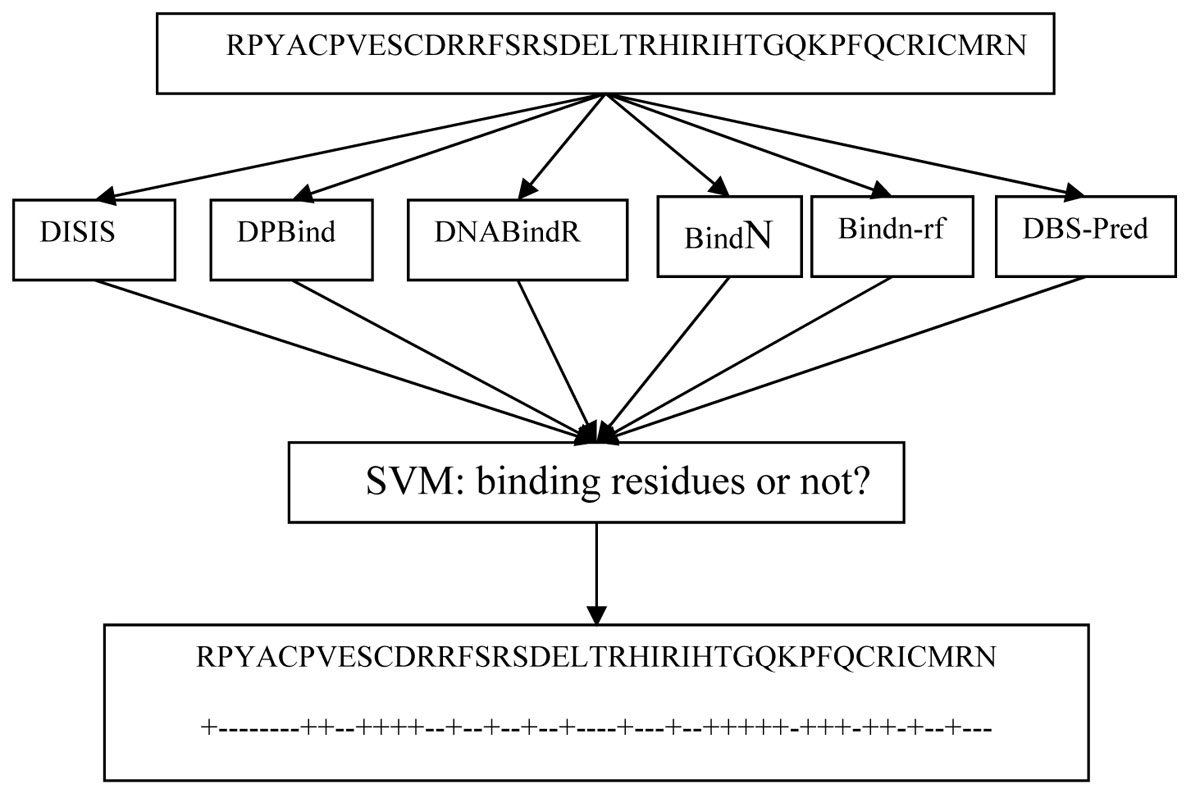 https://static-content.springer.com/image/art%3A10.1186%2F1752-0509-5-S1-S7/MediaObjects/12918_2011_Article_674_Fig1_HTML.jpg