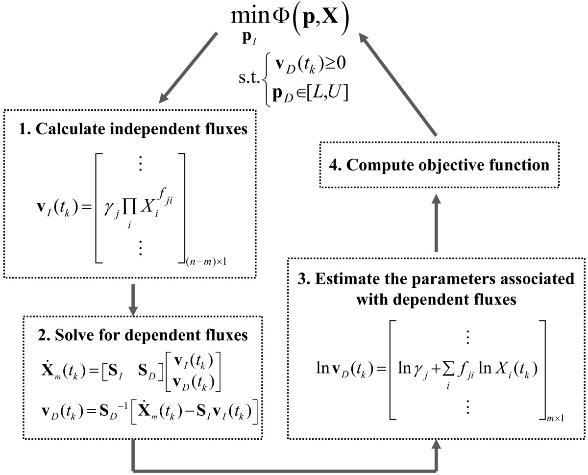 https://static-content.springer.com/image/art%3A10.1186%2F1752-0509-6-142/MediaObjects/12918_2012_Article_1041_Fig1_HTML.jpg