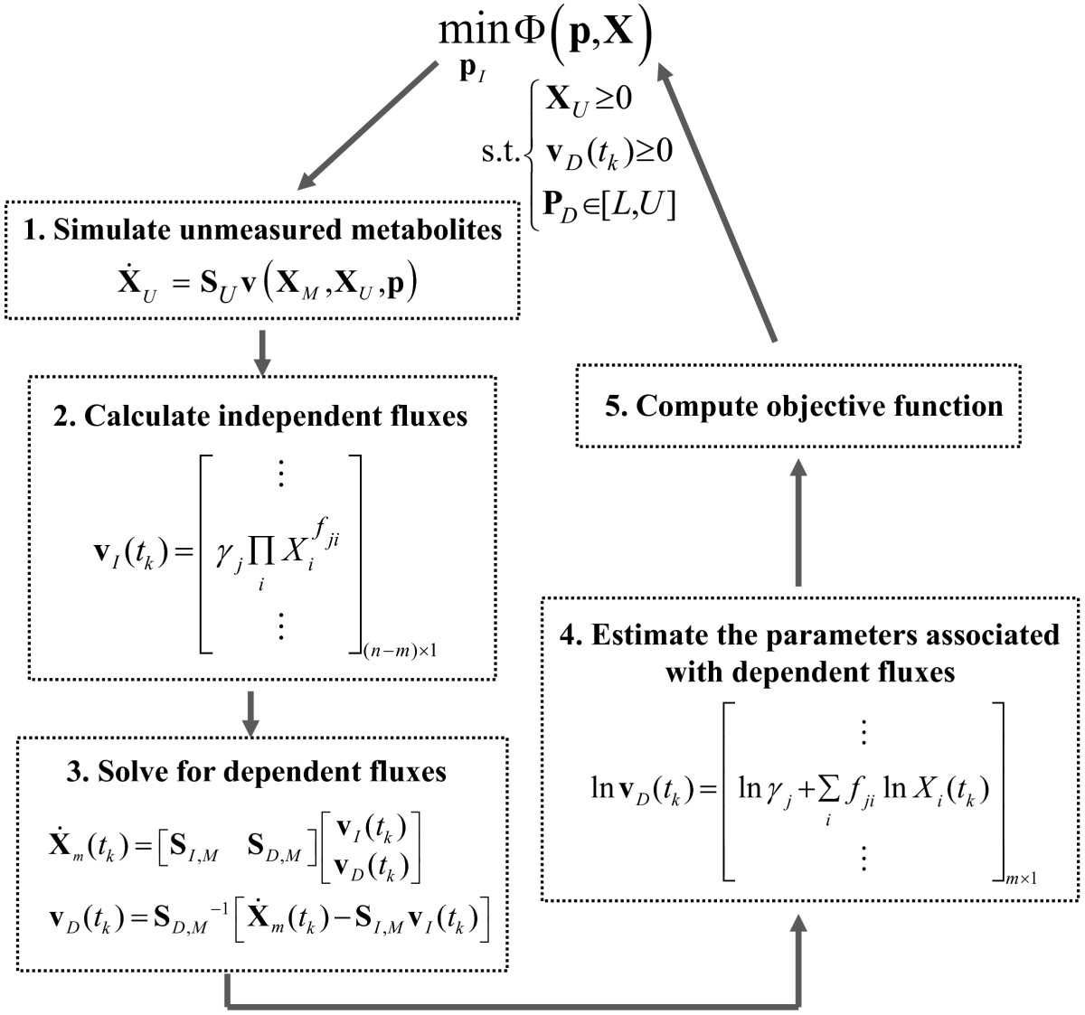 https://static-content.springer.com/image/art%3A10.1186%2F1752-0509-6-142/MediaObjects/12918_2012_Article_1041_Fig2_HTML.jpg
