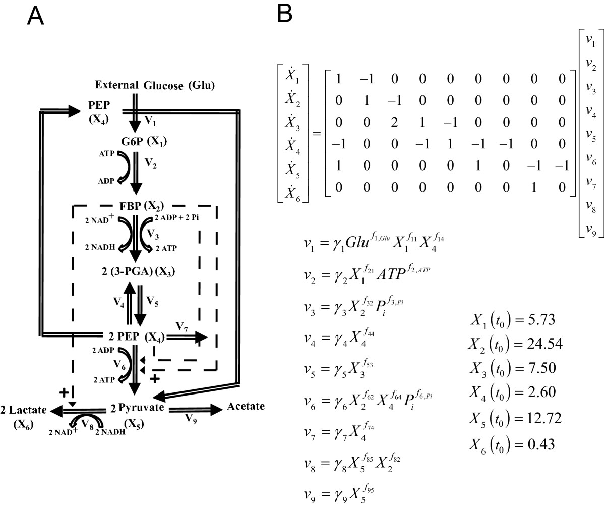https://static-content.springer.com/image/art%3A10.1186%2F1752-0509-6-142/MediaObjects/12918_2012_Article_1041_Fig7_HTML.jpg