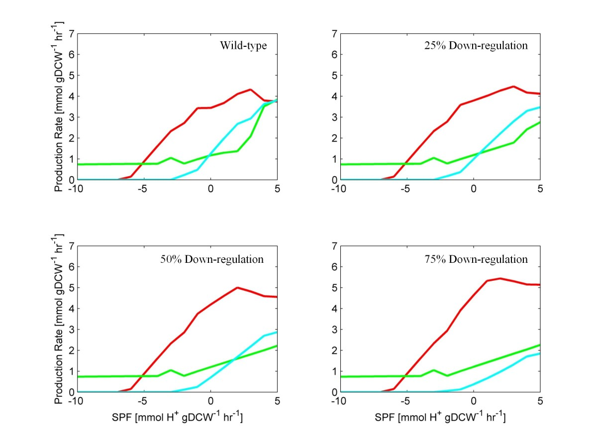 https://static-content.springer.com/image/art%3A10.1186%2F1752-0509-6-42/MediaObjects/12918_2012_Article_960_Fig5_HTML.jpg
