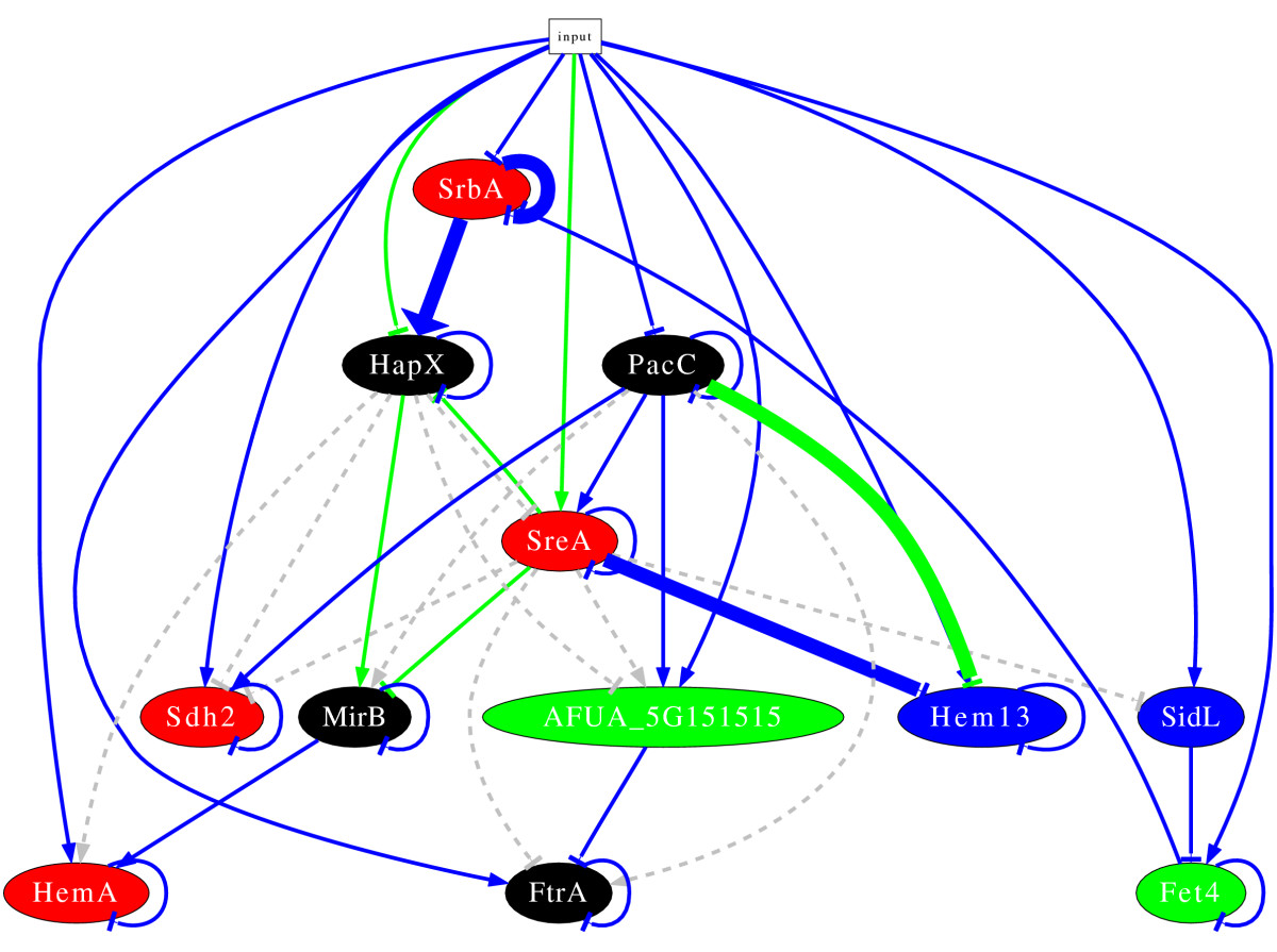 https://static-content.springer.com/image/art%3A10.1186%2F1752-0509-6-6/MediaObjects/12918_2011_Article_845_Fig4_HTML.jpg