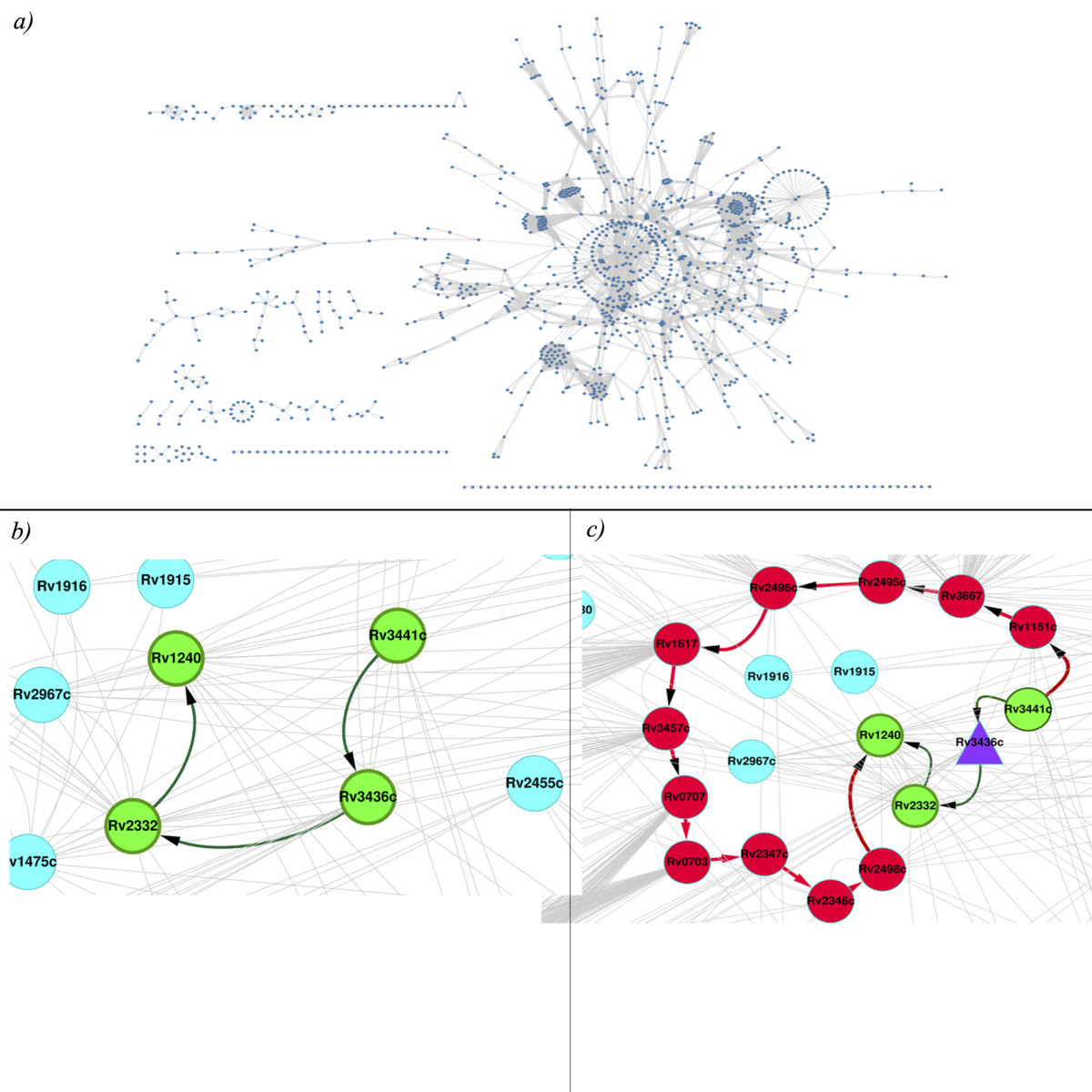 https://static-content.springer.com/image/art%3A10.1186%2F1752-0509-7-132/MediaObjects/12918_2013_Article_1222_Fig3_HTML.jpg