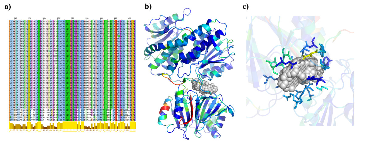 https://static-content.springer.com/image/art%3A10.1186%2F1752-0509-7-132/MediaObjects/12918_2013_Article_1222_Fig8_HTML.jpg
