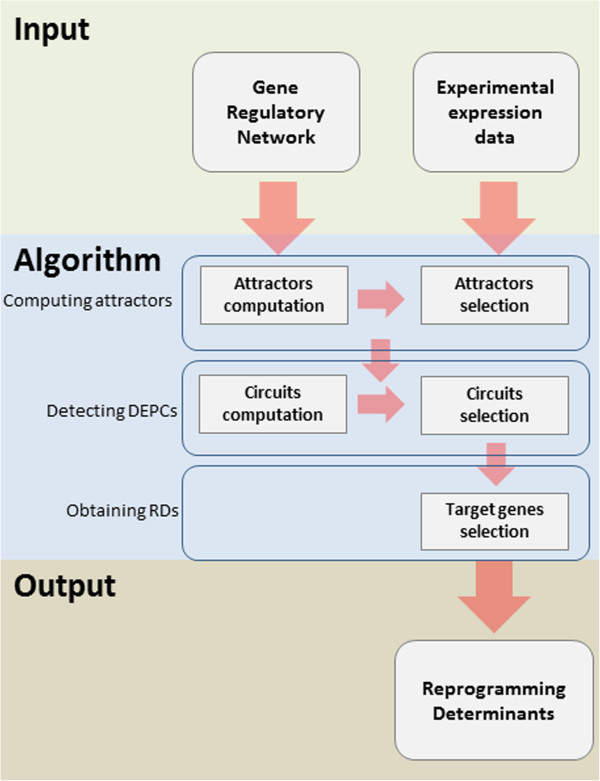https://static-content.springer.com/image/art%3A10.1186%2F1752-0509-7-140/MediaObjects/12918_2013_Article_1255_Fig2_HTML.jpg