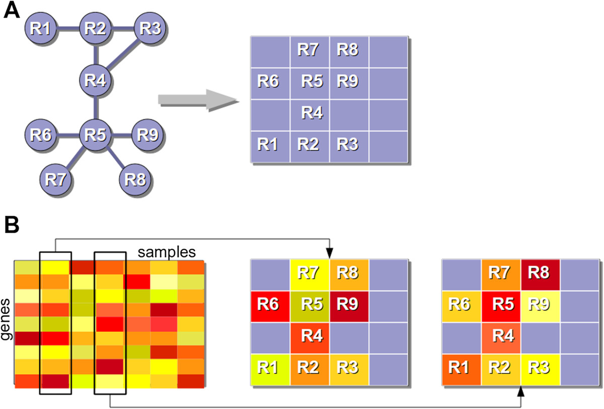 https://static-content.springer.com/image/art%3A10.1186%2F1752-0509-8-56/MediaObjects/12918_2014_Article_1322_Fig1_HTML.jpg