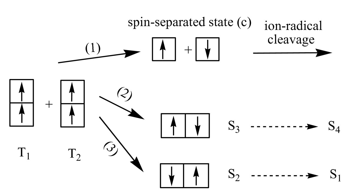 https://static-content.springer.com/image/art%3A10.1186%2F1754-0429-1-18/MediaObjects/13067_2008_Article_18_Fig4_HTML.jpg