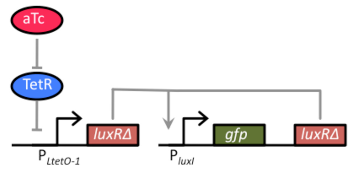 https://static-content.springer.com/image/art%3A10.1186%2F1754-1611-4-4/MediaObjects/13036_2009_Article_50_Fig3_HTML.jpg