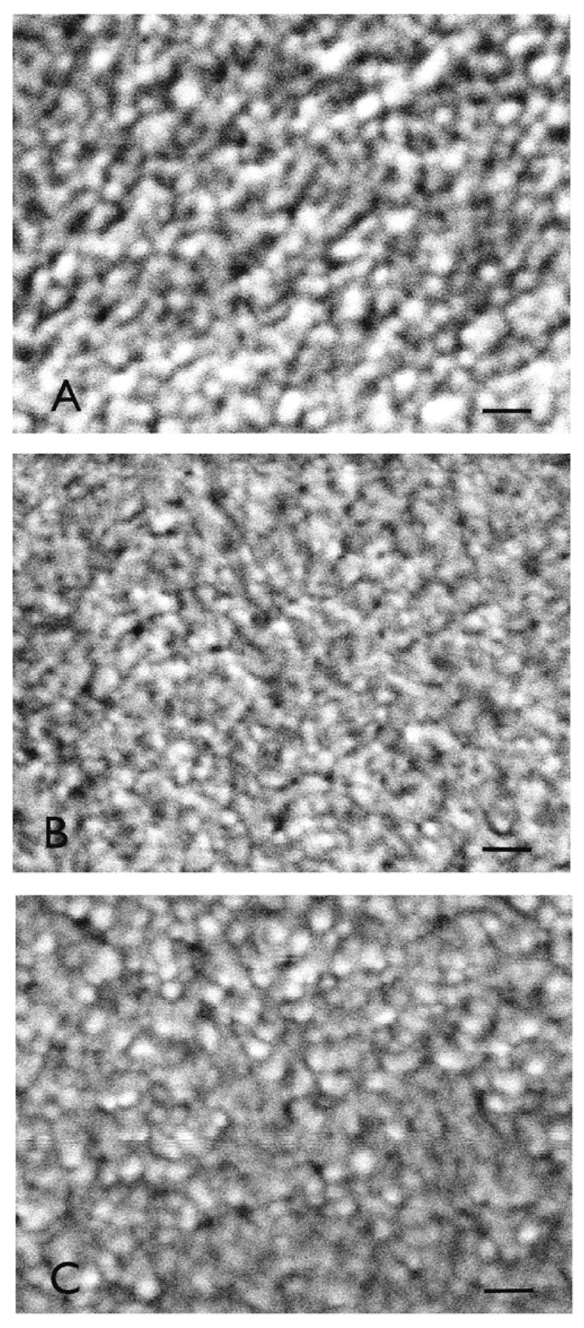 https://static-content.springer.com/image/art%3A10.1186%2F1754-1611-5-4/MediaObjects/13036_2010_Article_68_Fig5_HTML.jpg