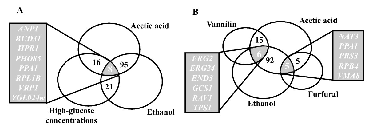 https://static-content.springer.com/image/art%3A10.1186%2F1754-6834-4-57/MediaObjects/13068_2011_Article_137_Fig1_HTML.jpg