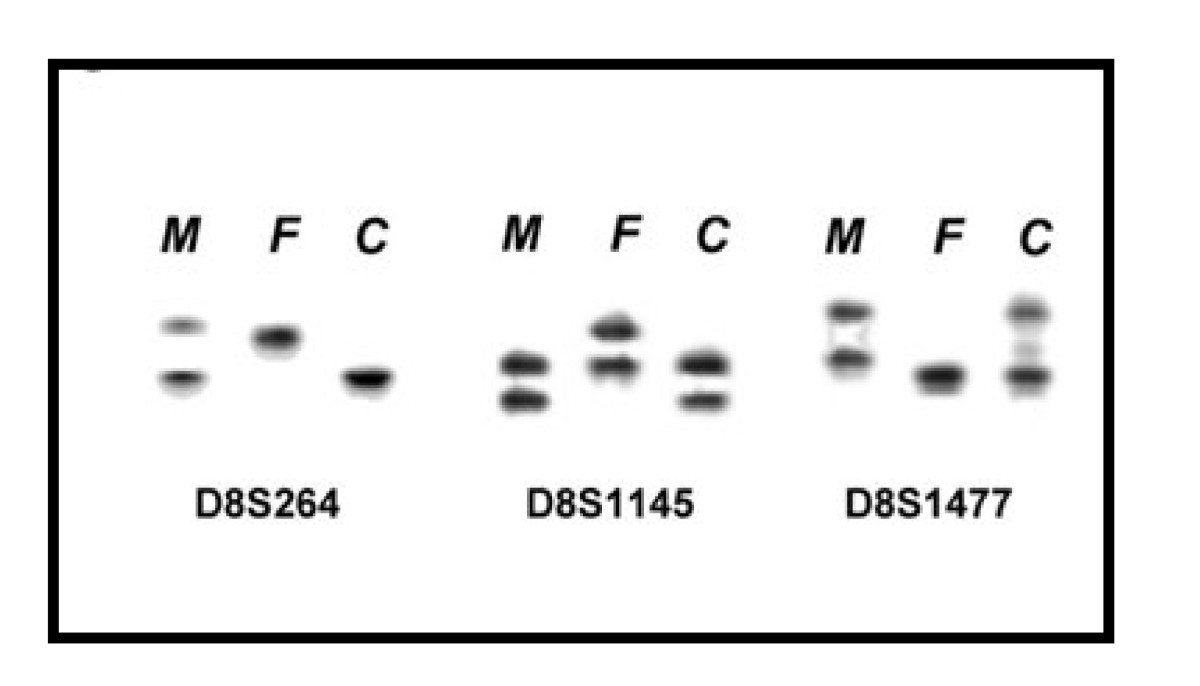 https://static-content.springer.com/image/art%3A10.1186%2F1755-8166-2-14/MediaObjects/13039_2009_Article_42_Fig5_HTML.jpg