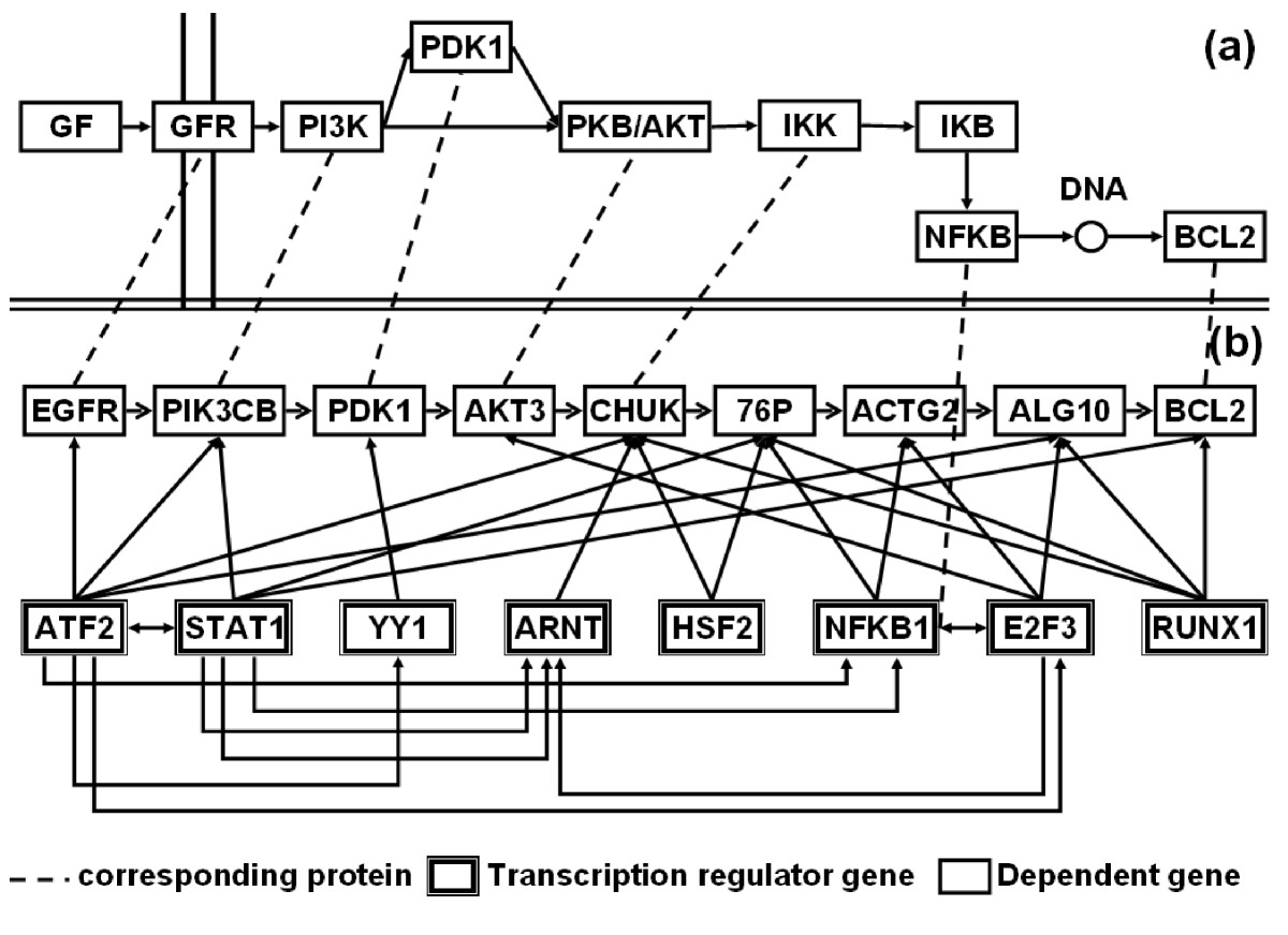 https://static-content.springer.com/image/art%3A10.1186%2F1755-8794-2-70/MediaObjects/12920_2009_Article_134_Fig11_HTML.jpg