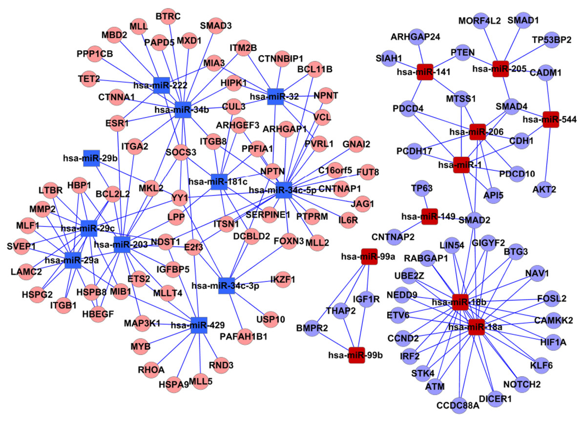 https://static-content.springer.com/image/art%3A10.1186%2F1755-8794-5-3/MediaObjects/12920_2011_Article_283_Fig2_HTML.jpg