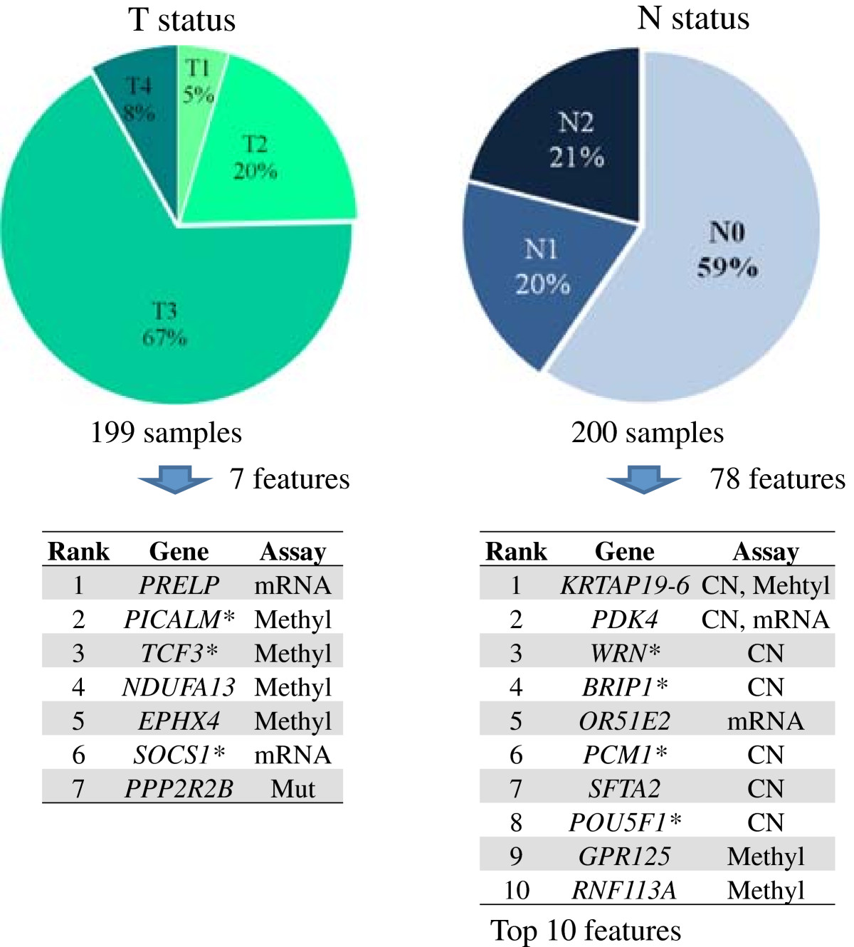https://static-content.springer.com/image/art%3A10.1186%2F1755-8794-6-54/MediaObjects/12920_2013_Article_438_Fig6_HTML.jpg