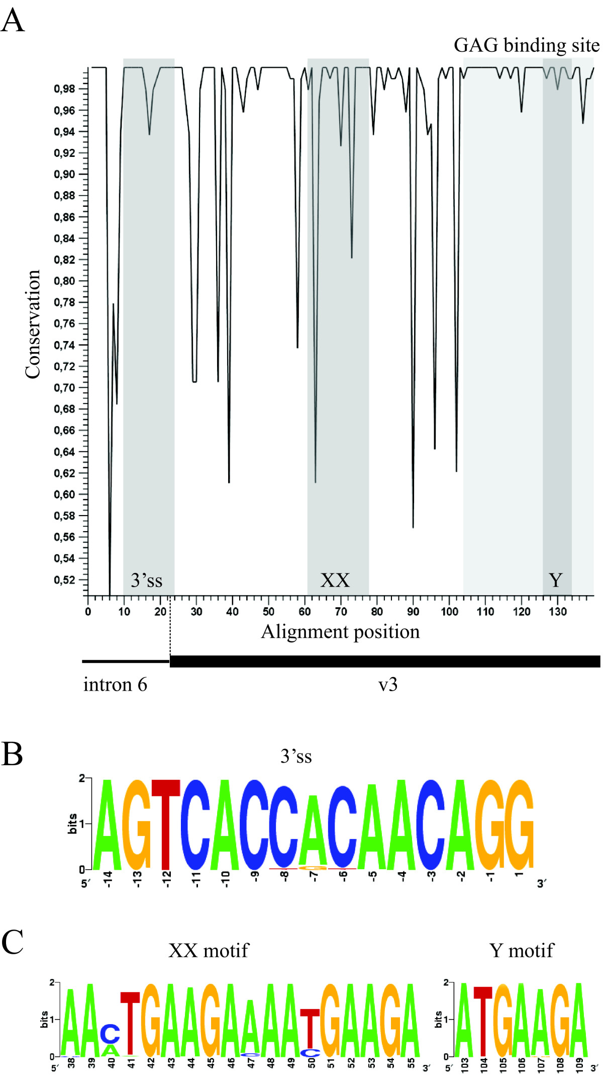 https://static-content.springer.com/image/art%3A10.1186%2F1756-0500-1-57/MediaObjects/13104_2008_Article_57_Fig2_HTML.jpg