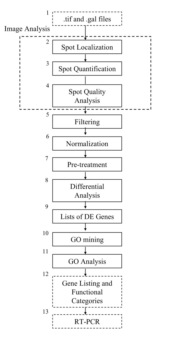 https://static-content.springer.com/image/art%3A10.1186%2F1756-0500-1-80/MediaObjects/13104_2008_Article_80_Fig2_HTML.jpg