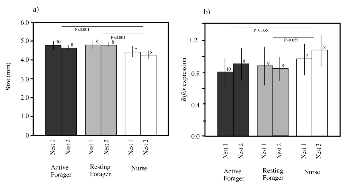 https://static-content.springer.com/image/art%3A10.1186%2F1756-0500-2-184/MediaObjects/13104_2009_Article_322_Fig1_HTML.jpg