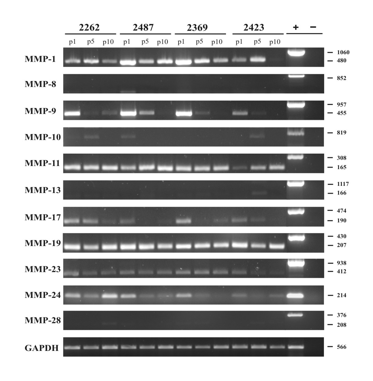 https://static-content.springer.com/image/art%3A10.1186%2F1756-0500-3-293/MediaObjects/13104_2010_Article_697_Fig3_HTML.jpg