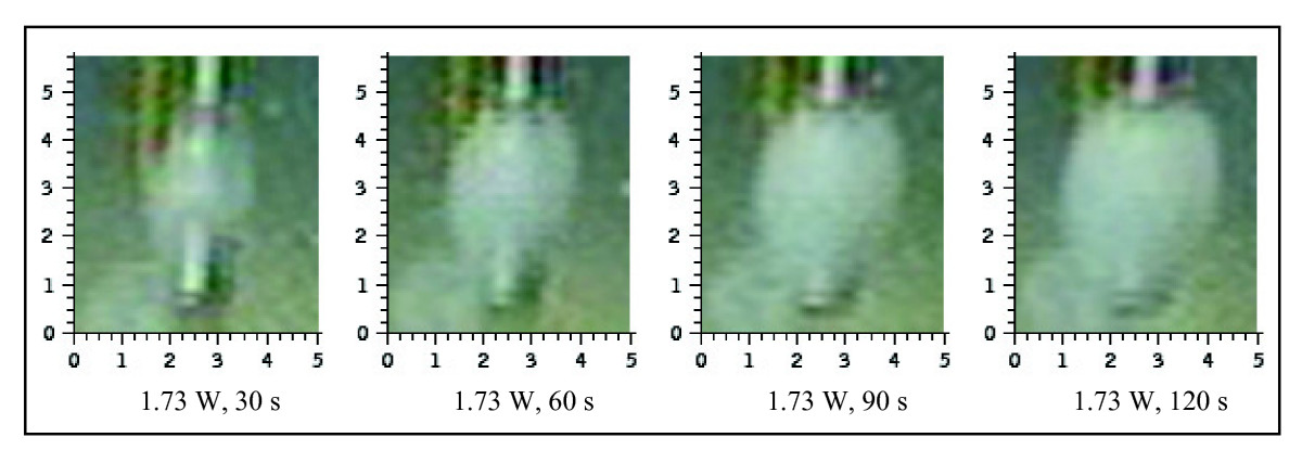 https://static-content.springer.com/image/art%3A10.1186%2F1756-0500-3-84/MediaObjects/13104_2009_Article_488_Fig3_HTML.jpg