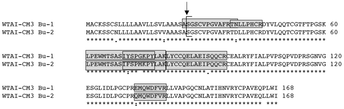 https://static-content.springer.com/image/art%3A10.1186%2F1756-0500-4-242/MediaObjects/13104_2011_Article_992_Fig3_HTML.jpg