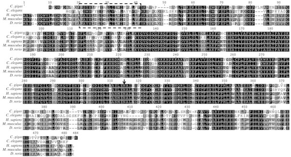 https://static-content.springer.com/image/art%3A10.1186%2F1756-0500-5-502/MediaObjects/13104_2012_Article_1834_Fig2_HTML.jpg