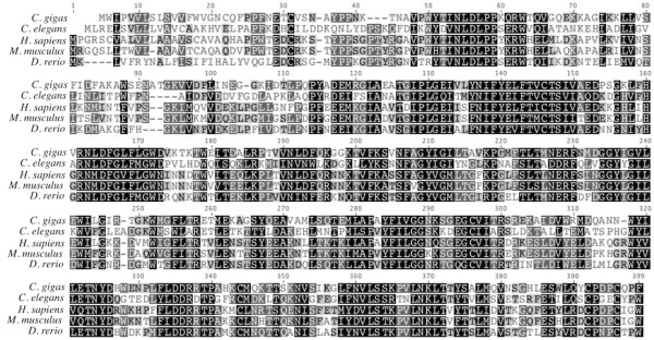 https://static-content.springer.com/image/art%3A10.1186%2F1756-0500-5-502/MediaObjects/13104_2012_Article_1834_Fig6_HTML.jpg