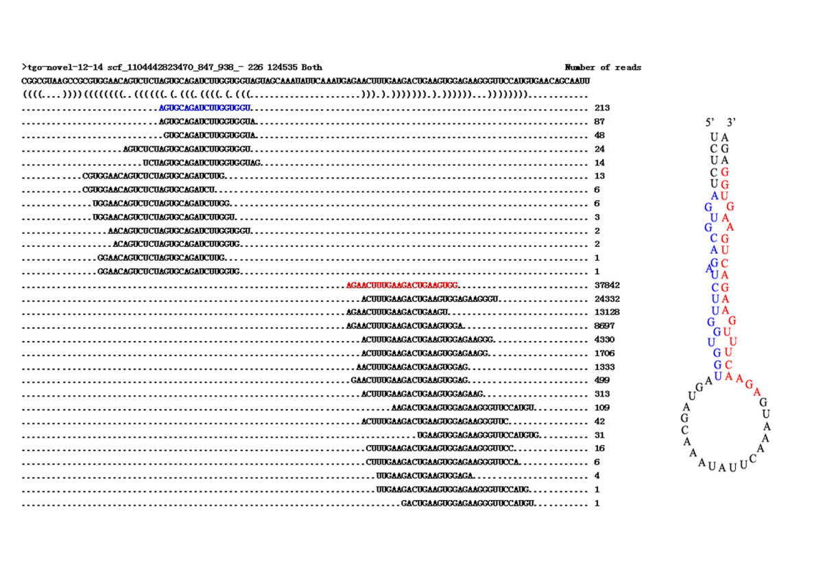 https://static-content.springer.com/image/art%3A10.1186%2F1756-3305-5-186/MediaObjects/13071_2012_Article_674_Fig6_HTML.jpg
