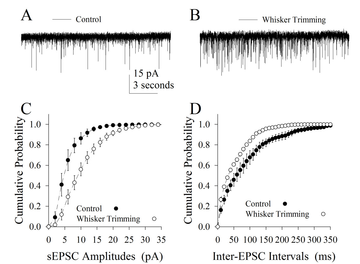 https://static-content.springer.com/image/art%3A10.1186%2F1756-6606-6-2/MediaObjects/13041_2012_Article_187_Fig3_HTML.jpg