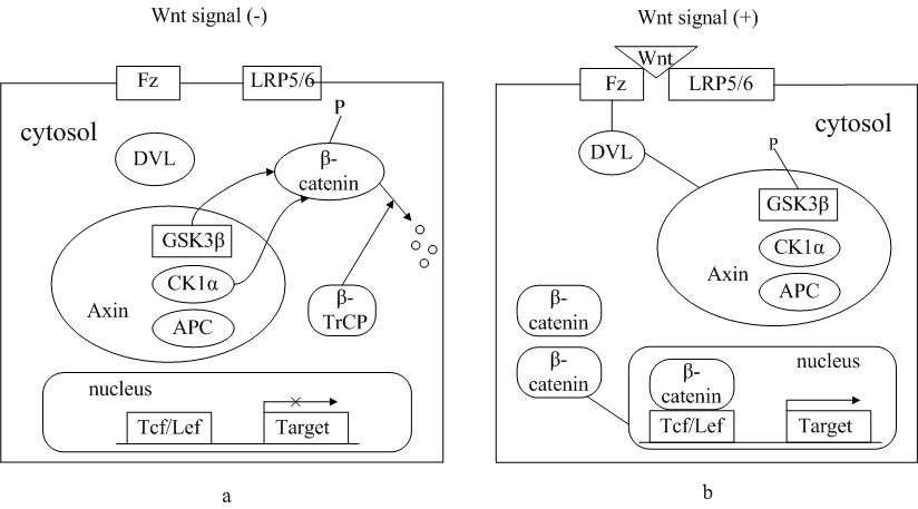 https://static-content.springer.com/image/art%3A10.1186%2F1756-8722-3-33/MediaObjects/13045_2010_Article_117_Fig1_HTML.jpg