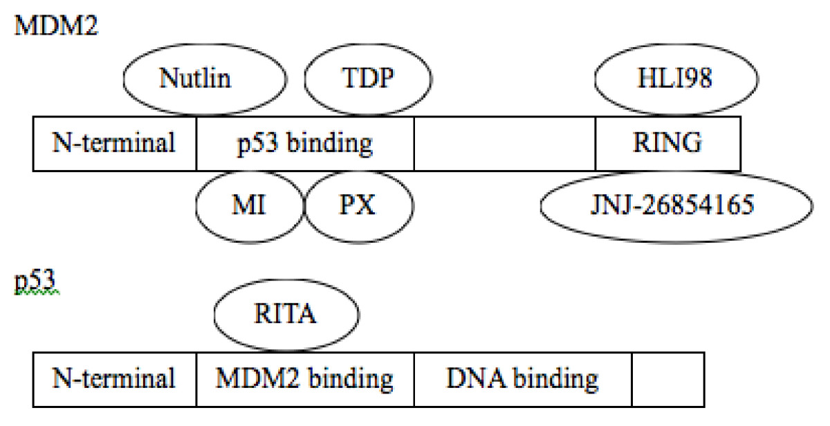 https://static-content.springer.com/image/art%3A10.1186%2F1756-8722-4-16/MediaObjects/13045_2011_Article_154_Fig1_HTML.jpg