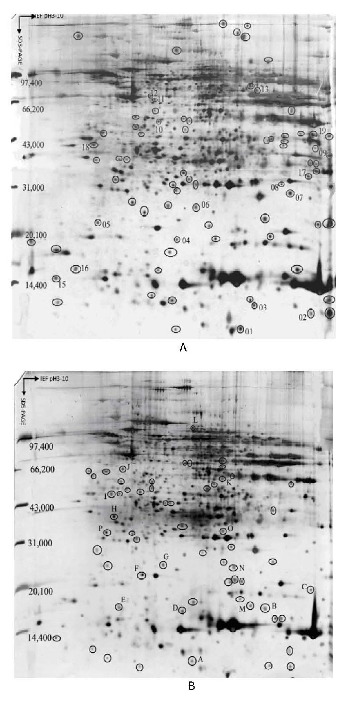 https://static-content.springer.com/image/art%3A10.1186%2F1756-9966-28-122/MediaObjects/13046_2009_Article_209_Fig1_HTML.jpg