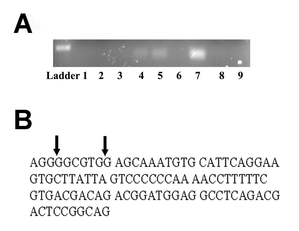 https://static-content.springer.com/image/art%3A10.1186%2F1756-9966-28-129/MediaObjects/13046_2009_Article_216_Fig1_HTML.jpg