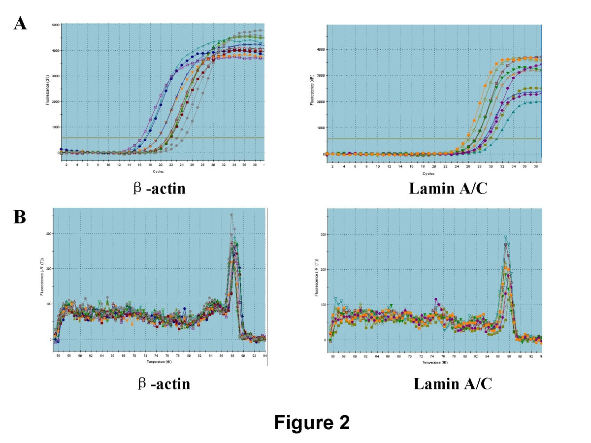 https://static-content.springer.com/image/art%3A10.1186%2F1756-9966-28-8/MediaObjects/13046_2008_Article_95_Fig2_HTML.jpg