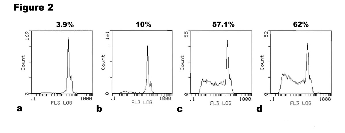 https://static-content.springer.com/image/art%3A10.1186%2F1756-9966-29-76/MediaObjects/13046_2010_Article_323_Fig2_HTML.jpg