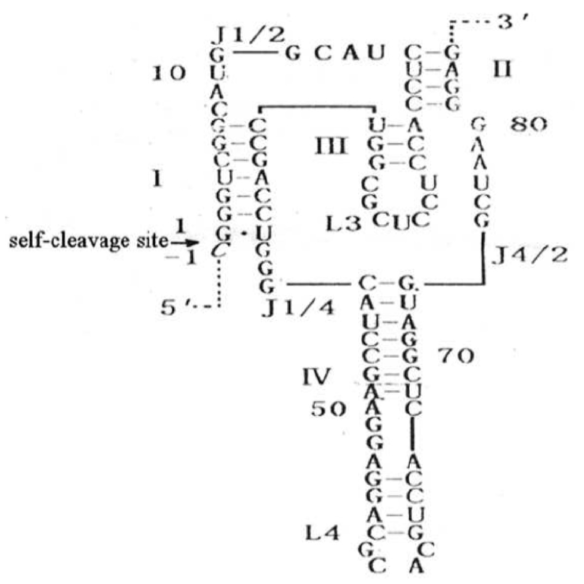 https://static-content.springer.com/image/art%3A10.1186%2F1756-9966-30-1/MediaObjects/13046_2010_Article_421_Fig1_HTML.jpg