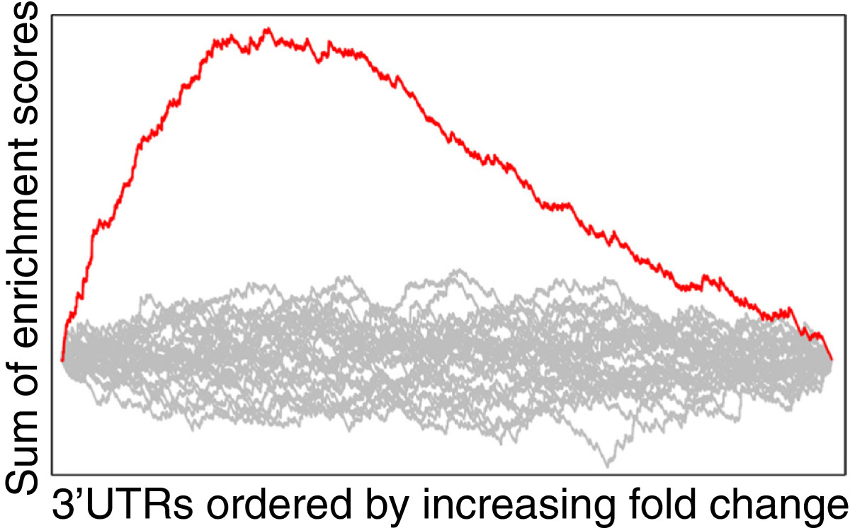 https://static-content.springer.com/image/art%3A10.1186%2F1758-907X-4-2/MediaObjects/13101_2013_Article_37_Fig5_HTML.jpg