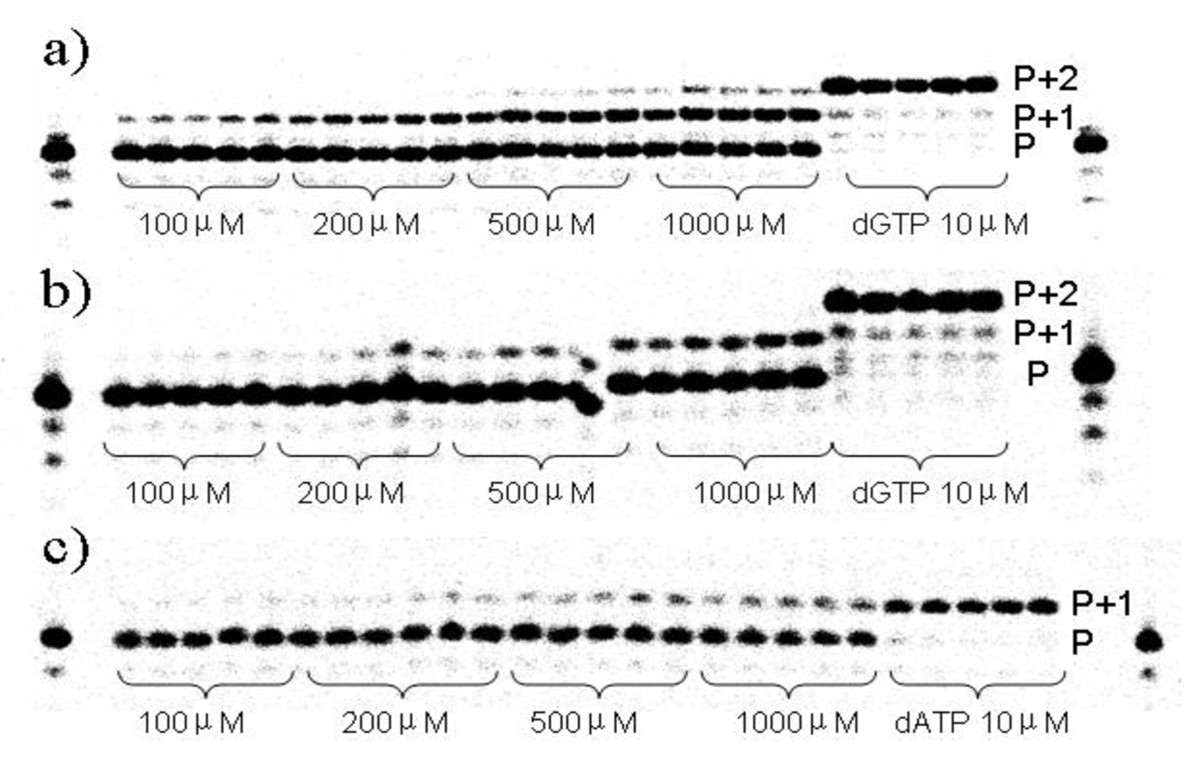 https://static-content.springer.com/image/art%3A10.1186%2F1759-2208-2-3/MediaObjects/13322_2011_Article_16_Fig3_HTML.jpg