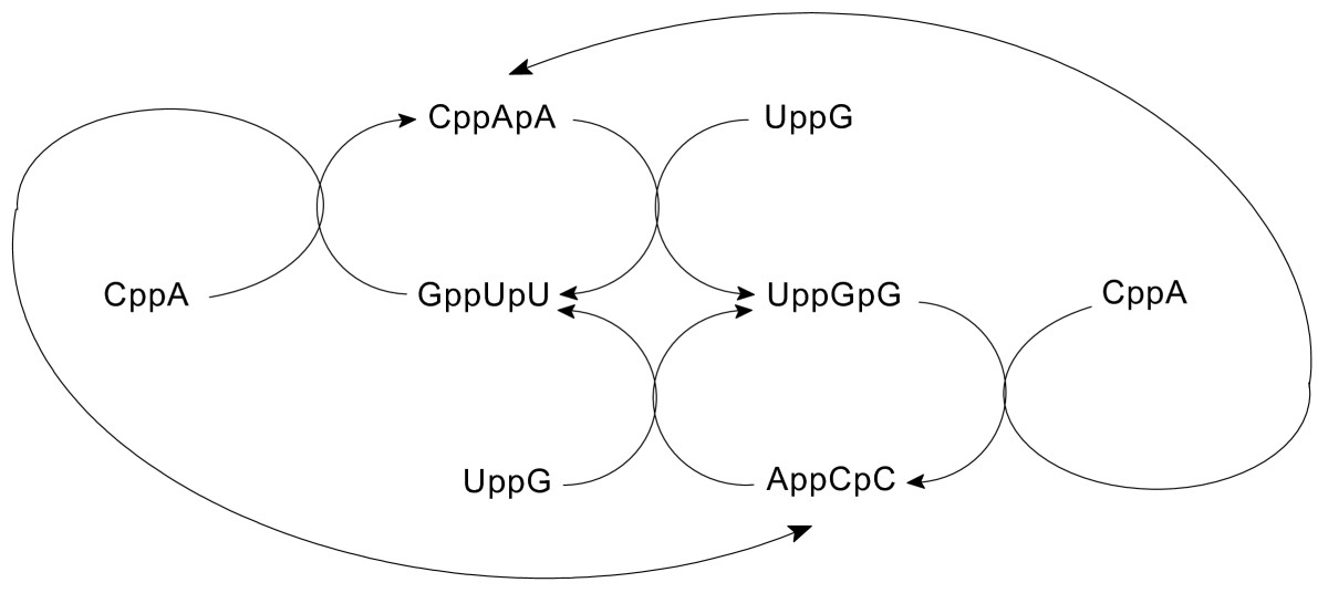 https://static-content.springer.com/image/art%3A10.1186%2F1759-2208-2-3/MediaObjects/13322_2011_Article_16_Fig8_HTML.jpg