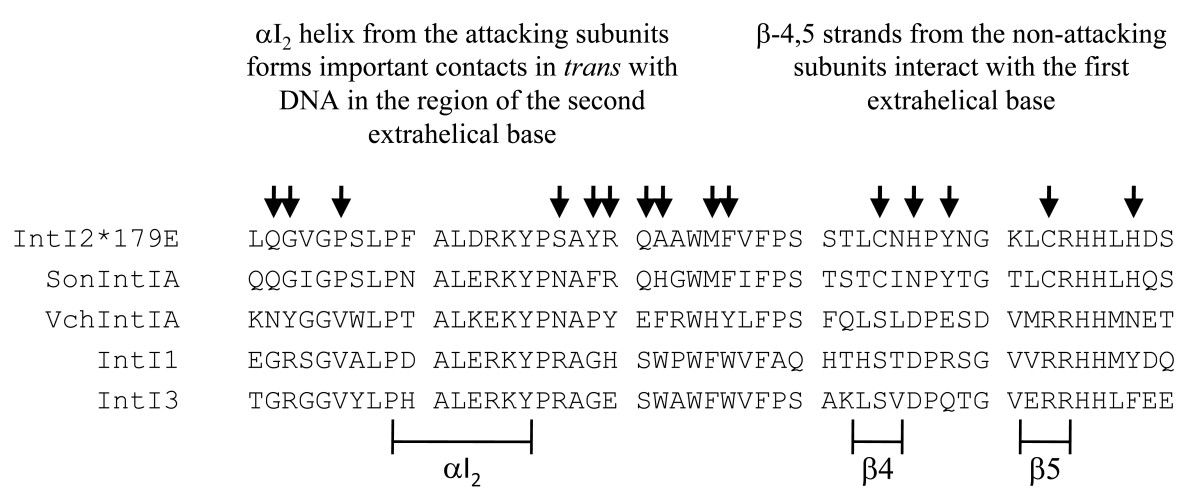 https://static-content.springer.com/image/art%3A10.1186%2F1759-8753-2-3/MediaObjects/13100_2010_Article_28_Fig8_HTML.jpg