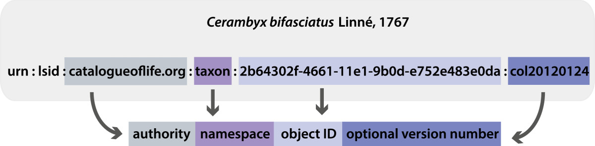 https://static-content.springer.com/image/art%3A10.1186%2F2041-1480-5-40/MediaObjects/13326_2013_Article_211_Fig1_HTML.jpg