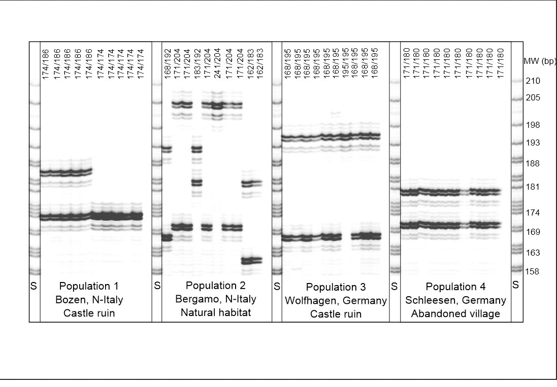 https://static-content.springer.com/image/art%3A10.1186%2F2041-2223-5-1/MediaObjects/13323_2013_Article_93_Fig3_HTML.jpg