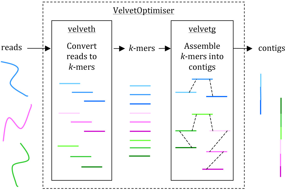 https://static-content.springer.com/image/art%3A10.1186%2F2042-5783-3-2/MediaObjects/13309_2013_Article_25_Fig1_HTML.jpg