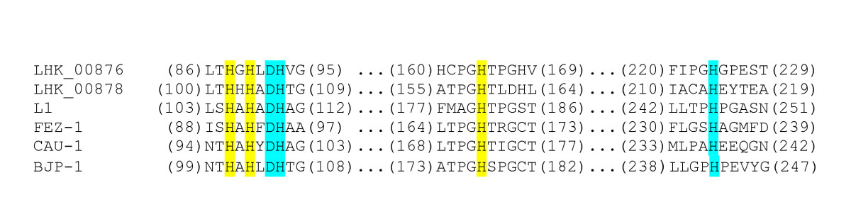 https://static-content.springer.com/image/art%3A10.1186%2F2045-3701-1-17/MediaObjects/13578_2011_Article_16_Fig15_HTML.jpg
