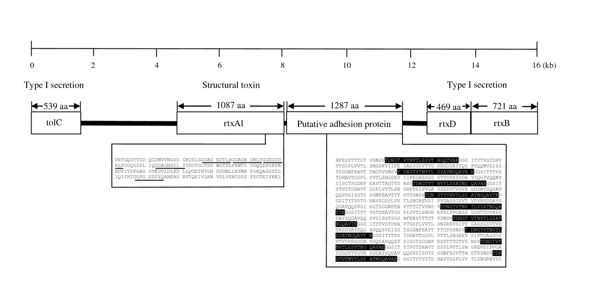 https://static-content.springer.com/image/art%3A10.1186%2F2045-3701-1-17/MediaObjects/13578_2011_Article_16_Fig8_HTML.jpg